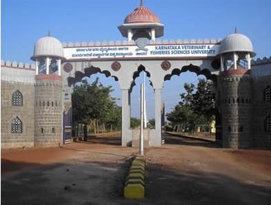 Karnataka Veterinary Animal & Fisheries Science University