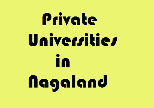 Private Universities in Nagaland