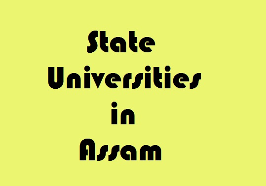 State Universities in Assam