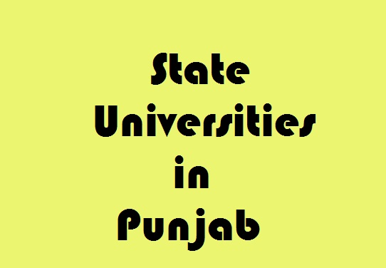 State Universities in Punjab