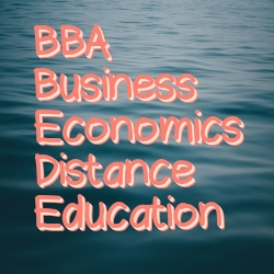 BBA Business Economics Distance Education