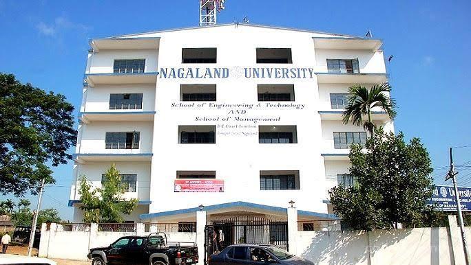 nagaland -university