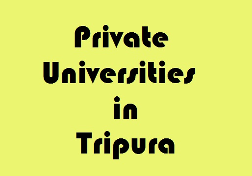 privte univercities in tripura